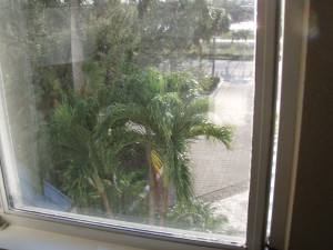 A long wire antenna running from the window to a palm tree