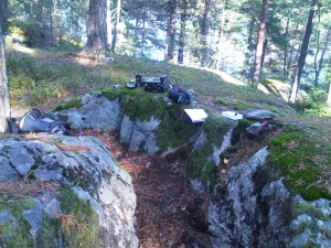 radio, tuner, earphones on a moss-covered rock