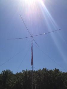 sunnySpider