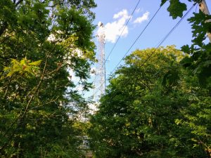 Powerlines run towards the tall antenna with microwave dishes.
